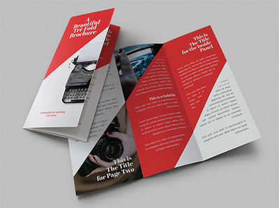 Design any Tri-Fold Brochure for your business with unlimited revisions