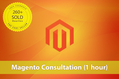 Provide one hour of Magento consultation for your website via phone or Skype