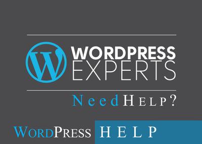 Fixed any WordPress Issue/Problem fixed