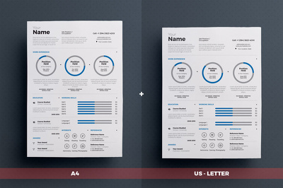 Prepare an infographic CV/resume
