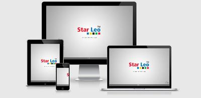 Design & Craft an amazing  Responsive, SEO friendly & Fast Loading WordPress website
