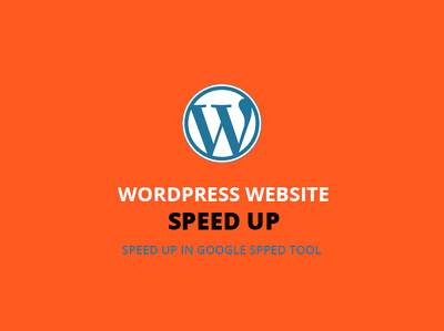 Advance speed optimization for your wordpress site and get better google speed score.