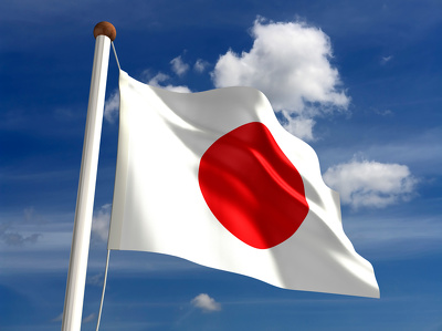 Offer 60mins consultation about Japan Market