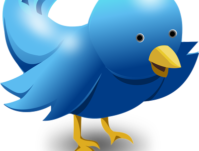 Write 30 self promotional posts, using your website images for Twitter