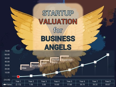 Provide a business angel with the value of the target seed startup investment