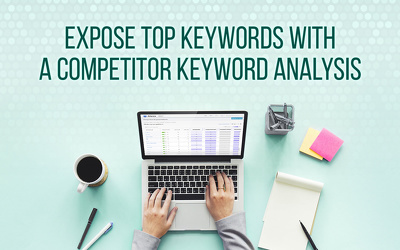 Analysis and provide you Niche Keywords for your business