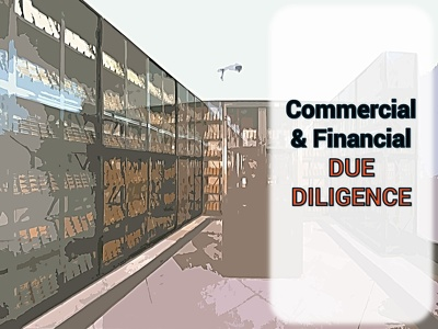 Conduct the commercial and financial Due Diligence of an early-stage startup