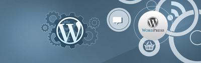 Fix any WordPress Issue/Problem/Error