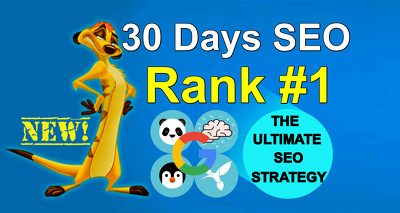 Daily 5 Manual PR10 High Authority Backlinks Building - Rank #1 - WhiteHat 2016