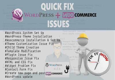 Provide An Hour Quick Fix Of WordPress and WooCommerce Issues