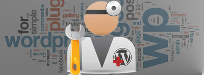 Provide support for WordPress Website