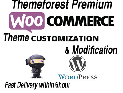 Customize your Premium WordPress Theme with in 6 hours