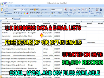 300,000+ B2B U.K EMAILS & BUSINESS DATA WITH BONUS