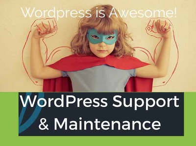 provide 2 hrs. of Wordpress Support, Maintenance, Updates, Fixes, Customization