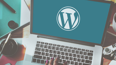 Do a wordpress theme installation and customization
