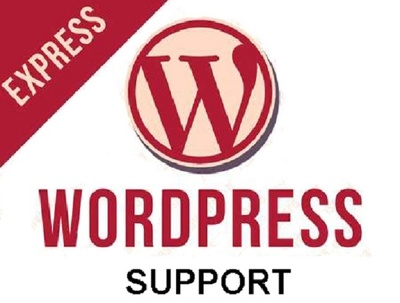 Provide one hour of Wordpress Support