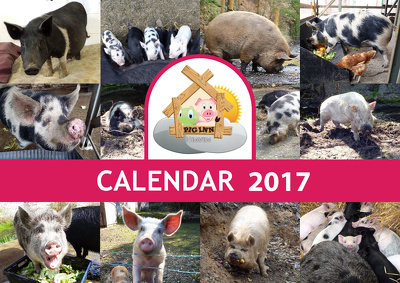 Create a 2017 photographic calendar desktop or wall size with unlimited revision