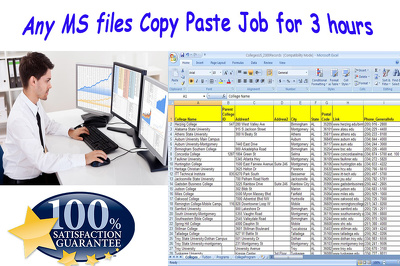 Do any MS files copy paste job for 3 hours
