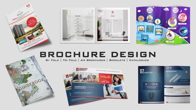 Design a Hi-Quality Professional Brochure / Catalogue / Magazine / Booklet