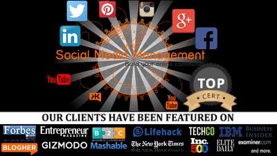 Social Media Marketing: Manage your social media pages - All Social Media Accounts