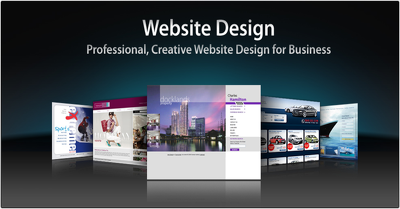 Create a Professional Wix Website for your Professional Personal or Business site