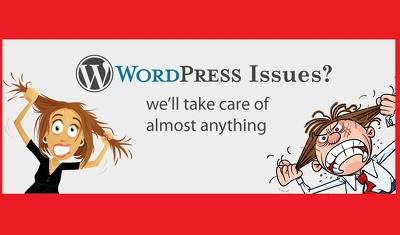 Fix any WordPress Problem / Bug...