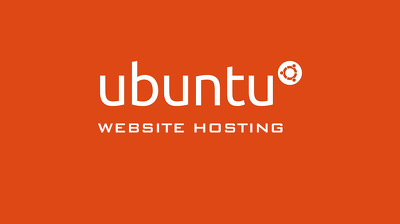 Setup your website and provide professional hosting for 1 year