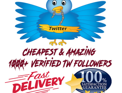 Provide Cheapest & Amazing 1000+ Verified TWITTER  followers