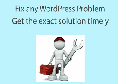 Fix any WordPress problem