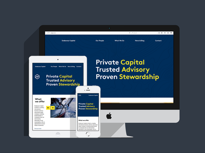 Design & Develop professional WordPress website with unique design.