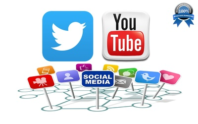 Provide 2000 HQ Twitter followers OR 3000 Real YouTube Views