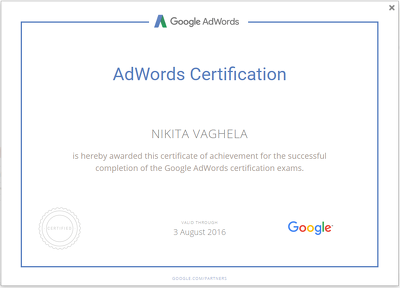 Review your Adwords Account and give you a Detailed Report