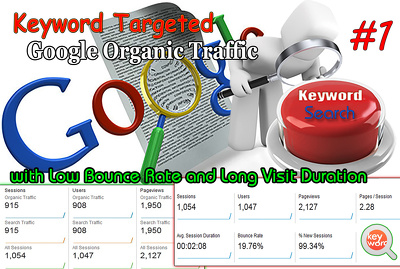 Unlimited  SEO KEYWORD TARGETED Google Organic Traffic with Low Bounce Rate