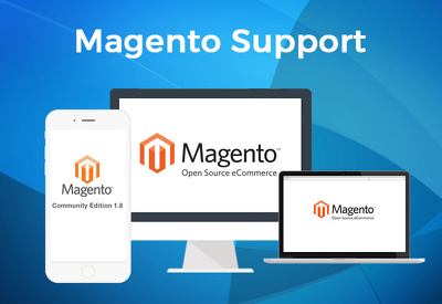 Fix  any magento store  issue or task