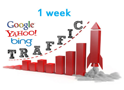 Send unlimited traffic for 1 week(5 days) to your website