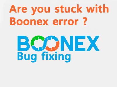 boonex bug fixing