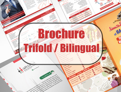 Design your professional trifold bilingual brochure