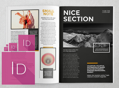 Do any Adobe InDesign project