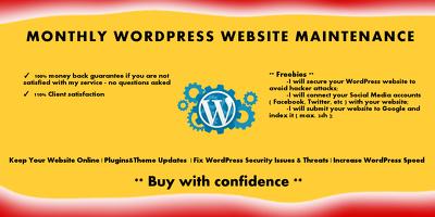 Provide WordPress Website Maintenance