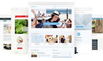 Install WordPress + Premium Theme + LogoDesign and setup Website