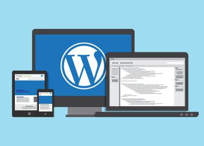 Develop SEO friendly Wordpress website