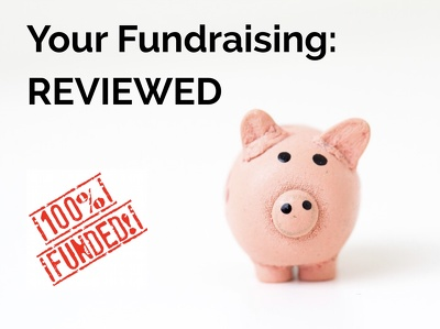 Expert review of your fundraising: more compelling, more concise, more money