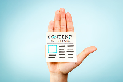 Write you a 500 word SEO friendly blog post on any topic within 1 day