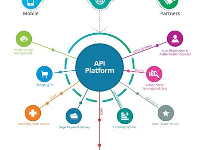 Provide Any API Integration