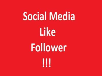 Provide 1100 Social media   like or Follow