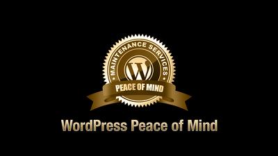 1 Hour Wordpress website updates/customisation maintenance [WordPress Peace of Mind]