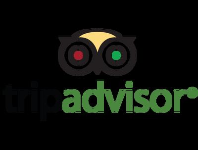 Provide two (2) 5-Star TripAdvisor Review (200+ words). Trip Advisor Google Review