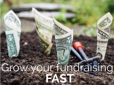 Grow your Fundraising FAST: In just one hour you too can learn how