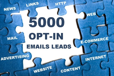 Provide 5000 emails leads from US for your business to boost your sales