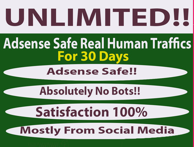 Drive UNLIMITED adsense safe real traffics to your website for one month